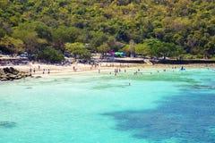 PATTAYA, STYCZEŃ 13: Turyści pływają w morzu Koh Larn wyspy plaża w Pattaya mieście Obrazy Royalty Free