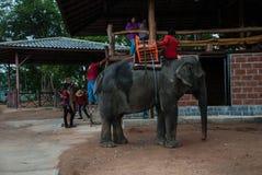 Pattaya, Tailândia Fotografia de Stock Royalty Free