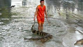Pattaya, Tailândia - 30 de dezembro de 2017: Mostre com crocodilos O instrutor mostra o desempenho com crocodilos filme