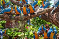 PATTAYA, TAILÂNDIA - EM MARÇO DE 2013: Jardim de Nong Nooch Fotos de Stock