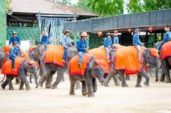 Pattaya, Tailândia: A mostra famosa do elefante. Foto de Stock