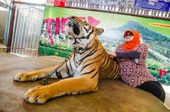Pattaya, Tailandia:  Demostración del tigre. Foto de archivo libre de regalías