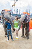 Pattaya, Tajlandia: Sławny słonia przedstawienie. Zdjęcia Royalty Free