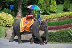 Pattaya, Thaïlande : Conduite d'éléphant chez Nong Nooch Photographie stock