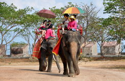 Pattaya, Thaïlande : Conduites thaïes d'éléphant de temple Photo libre de droits