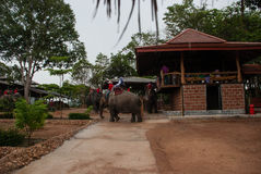 Pattaya, Thailand Stockbilder