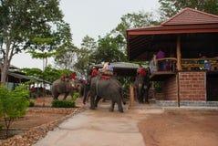Pattaya, Thailand Stockfoto