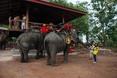 pattaya thailand Arkivfoton