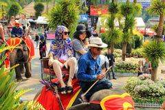 Pattaya, Thailand De Chinese toeristen berijden olifanten in het landschapspark van Nong Nooch Royalty-vrije Stock Afbeeldingen