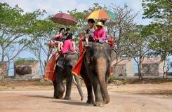 Pattaya, Thailand: De Thaise Ritten van de Olifant van de Tempel Royalty-vrije Stock Foto