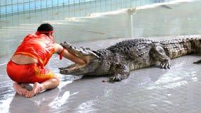 Man puts his hand in the mouth of a crocodile. Pattaya Crocodile Farm. Thailand