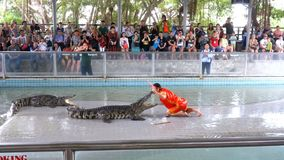 People at extreme crocodile show. Famous Pattaya Crocodile Farm. Thailand. Asia