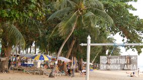 PATTAYA, THAILAND, December 14, 2017: View on the beach promenade with palm trees and coconuts in Thailand. People rest. PATTAYA, THAILAND, December 14, 2017 stock video