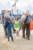 Pattaya Thailand: Den berömda elefantshowen. Royaltyfria Foton
