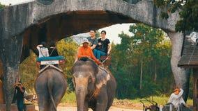 PATTAYA, THAILAND - 26. DEZEMBER 2017: Elefanten im Elefantdorf Die Elefanten, auf die die Touristen fahren stock footage