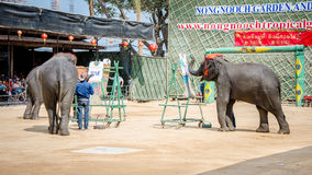 Pattaya, Thailand :  Elephant painting show. Stock Photo