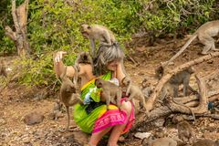 Pattaya, Thailand - Januari 01, 2014: Monkey Island dichtbij Pattaya stock foto