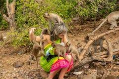 Pattaya Thailand - Januari 01, 2014: Monkey Island nära Pattaya arkivfoto