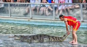 PATTAYA, THAILAND - 26. Juni: Krokodilshow Stockbilder