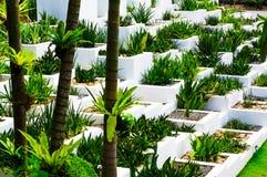 Pattaya, Thailand - 18. März 2016: Eine klare weiße Wand mit Plan Stockfotos