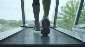Pattaya Thailand - Maj 15, 2019: Slut upp kvinnas ben i rosa gymnastikskor på a Treadmill i idrottshallen stock video