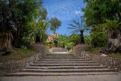 Pattaya Thailand miljon år fossil arbeta i trädgården, och krokodilen parkerar Arkivbilder