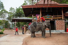 Pattaya, Thailand Royalty Free Stock Photos