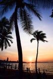 Pattaya van Thailand Royalty-vrije Stock Afbeelding