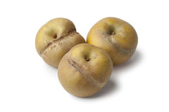 Patte de loupe apples Stock Photos