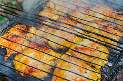 Patte de poulet grillée Images stock