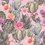 Patte inconsútil floreciente del cactus de la acuarela natural exótica del vintage stock de ilustración