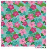 Patterm sem emenda da flor do hibiscus Fotos de Stock