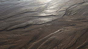 Pattern. Little streams running through sand forming pattern Royalty Free Stock Photo