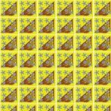 Pattern39 Fotografering för Bildbyråer