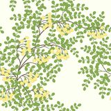 Pattern with abstract leaves and flowers Royalty Free Stock Photos