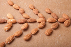 Pattern of almond laid on gingerbread Stock Photo