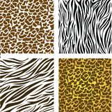 Pattern of animal print Royalty Free Stock Photography