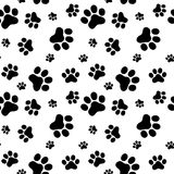 Pattern of animals paws Stock Photo