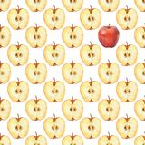 Pattern with apple slice 1. Watercolor seamless pattern. Hand drawn watercolor seamless pattern Stock Image