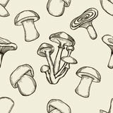 Pattern with artistically drawn mushrooms Stock Image