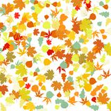 Pattern with autumn leafs. EPS 8 Stock Photo