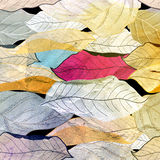 Pattern of autumn leaves Stock Photo