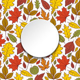 Pattern with autumn leaves Royalty Free Stock Photography