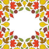 Pattern with autumn leaves Stock Image