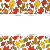 Pattern with autumn leaves Royalty Free Stock Images