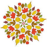 Pattern with autumn leaves Stock Photos