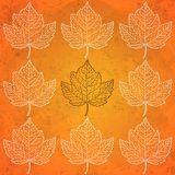 Pattern with autumn leaves in orange Stock Photo