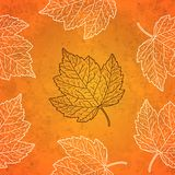 Pattern with autumn leaves in orange Royalty Free Stock Photo