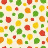 Pattern from autumn leaves Royalty Free Stock Photography