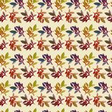 Pattern with autumn leaves Stock Images